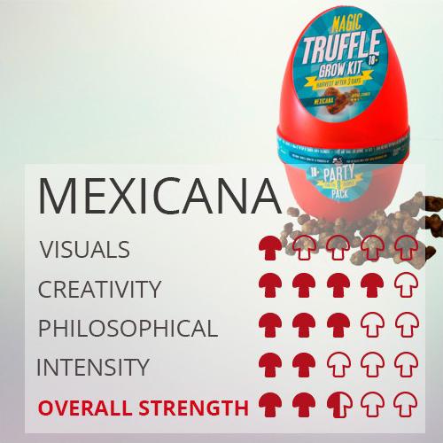 Magic Truffles Growkit Mexicana